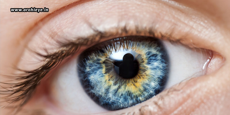 Retina-Interesting-Facts-For-You.jpg